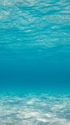 On the ocean floor