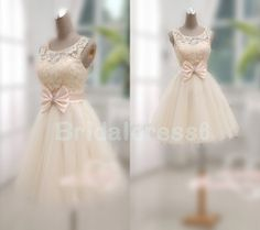 Champagne Lace Applique Crew See-through Bowknot Lace-up Short Gown Celebrity Dress,Tulle Formal Evening Party Prom New Homecoming Dress Homecoming Dresses, Bridesmaid Dresses, Wedding Dresses, Pretty Dresses, Beautiful Dresses, Gorgeous Dress, Social Dresses, Rehearsal Dinner Dresses, Short Gowns