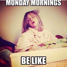 Funny Monday Memes, Hump Day Humor, Funny Quotes, Funny Memes, Daily Memes, Monday Morning Humor, Sunday Humor, Funny Drunk, Drunk Texts