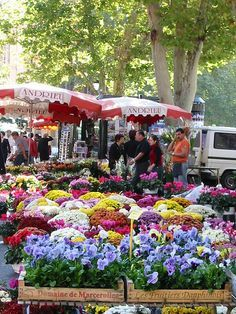 The market in Aix en Provence, France - in this case, a place to go BACK. Such a lovely place to wander around and buy local goods and chat with vendors. Aix En Provence, Provence France, Visit France, South Of France, Beautiful World, Beautiful Places, Flower Market, Flower Shops, French Countryside