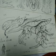 Dragonana, dragon + banana, this  dragon peeling its skin in every four years from its tail , and every third peeled skin turn into wings that can let this dragon float in the air. Because it's peeling skin looks like a banana, so name it in Dragonana Length: >15m.  #sketch #creature #creaturesdesign  #art #alien #design #pencil #dragon #idea #imagination #banana #LuciferYee0102 #monster