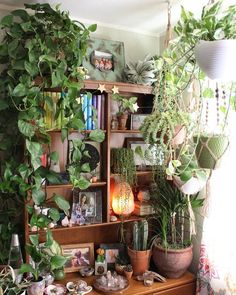 Living Room Decoration With Plants Ideas You'll Like; Living Room Decoration With Plants; Plants In Living Room; Living Room With Plants Deocr; Hanging Plants, Indoor Plants, Indoor Gardening, Indoor Herbs, Hanging Gardens, Patio Plants, Tall Plants, Diy Hanging, Potted Plants