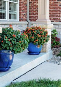 Blue planters. Porch Blue planters. Porch planters. The blue pots are from a local nursery. The name is: For the Garden, Haefner's Greenhouse, Oakville, Missouri. #Blueplanters #planters #porchplanters Home Bunch Beautiful Homes of Instagram wowilovethat
