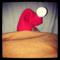 12/5/12  Elf says too much excitement last night. Need more sleep.