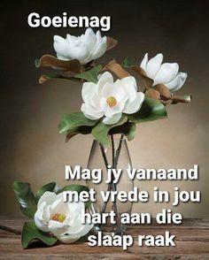 Good Night Blessings, Goeie Nag, Goeie More, Afrikaans Quotes, Beautiful Landscapes, Qoutes, Messages, Cartoon Pics, Morning Coffee