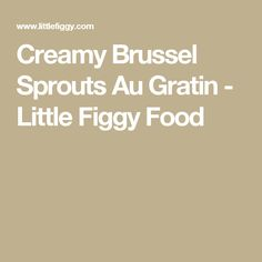 Creamy Brussel Sprouts Au Gratin - Little Figgy Food