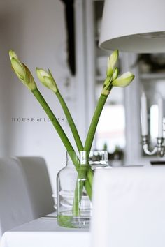 HOUSE of IDEAS Flower http://myhouseofideas.blogspot.de/