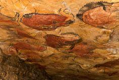 Cueva de Altamira, Vista general del techo de la Gran Sala desde el punto de vista de un visitante actual.