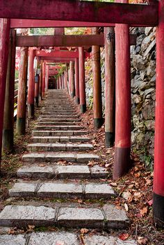 Kiyotaka-Inari, Mount Koya, Japan  ~ this is a familiar scene throughout Japan