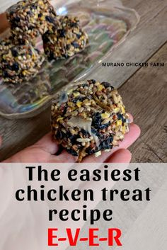 Make suet cakes for your chickens this winter! Quick and easy recipe using almost anything you have on hand! You just need a solid fat and seeds for these easy to make chickens treats! Recipes chicken Quick and easy chicken treats