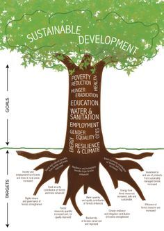 ICTSD • Forests in the sustainable development goals