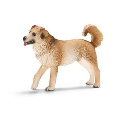 Schleich 16817 Mixed Breed Dog by Schleich. $6.04. Zoological Name: Canis lupus familiaris. Fun Fact: Mixed breed dogs are often a crazy mix of the most different breeds.. Conservation Status: domesticated. 1 in L x 2.8 in W x 2 in H. Mixed breed dogs are loyal and intelligent animals. The mixed breed dog is a loyal friend and accompanies his master wherever he goes.