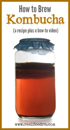 To Brew Kombucha. A recipe plus a how-to video. Learn how to make this delicious probiotic beverage in your own kitchen and save lots of money by not buying it from the store! How To Brew Kombucha, Kombucha Recipe, Kombucha Tea, Kombucha Probiotic, Kombucha Fermentation, Fermented Foods, Kefir, Healthy Drinks, Real Food Recipes