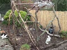Rustic pergola made from tree branches!