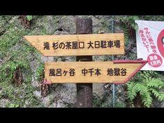 旅ノブログ: iphone 7 plusテスト撮影箕面公園