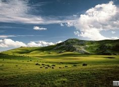 mountain landscape wallpaper Landscape Wallpaper, Mountain Landscape, Golf Courses, Free, Collection, Scenery Wallpaper
