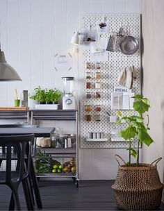 White SKÅDIS pegboards attached to a kitchen wall next to a worktop with accessories to hold recipes and smoothie ingredients.