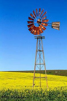 """South African """"Windpomp"""" Pictures To Paint, Art Pictures, Farm Images, Old Windmills, Abstract Landscape, Landscape Photos, Water Tower, Le Moulin, Nature Scenes"""