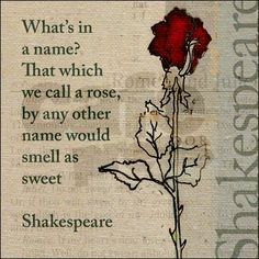 """What's in a name? That which we call a rose By any other word would smell as sweet. """" - William Shakespeare - (1564-1616) qoute"""