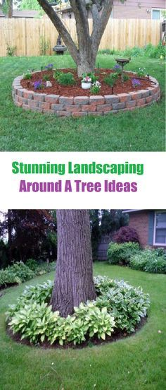 Outdoors Discover Stunning Landscaping Around A Tree Ideas - Landscaping Expert Tips Are you looking for landscaping ideas around a tree for backyard or front yard? l have here stunning landscaping around a tree ideas for your inspiration. Landscaping Around House, Outdoor Landscaping, Front Yard Landscaping, Outdoor Gardens, Landscaping Ideas, Hydrangea Landscaping, Inexpensive Landscaping, Farmhouse Landscaping, Urban Gardening