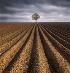 Geometric Isolation Photography by Derek Hansen
