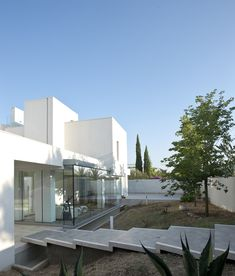 Single Family House by Pedone Working