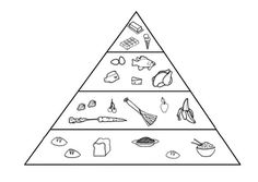 Suggested for Health Food Pyramid Coloring Pages Fox Coloring Page, Animal Coloring Pages, Free Coloring, Coloring Pages For Kids, Food Pyramid Kids, Arctic Fox Color, Captain America Coloring Pages, Online Coloring Pages, Arctic Animals