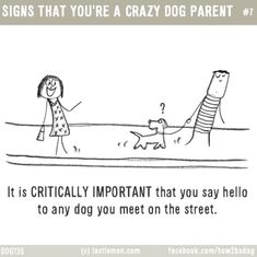 380 Best A Girl And Her Dog Images In 2019 Dog Funny Dogs I Love