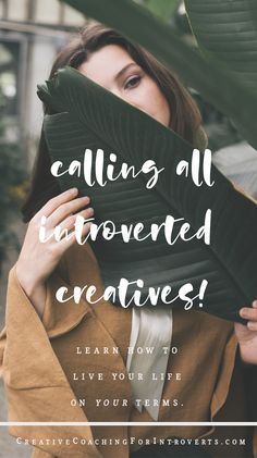 Are you an artist or creative who has been craving coaching, but you're either too introverted, too busy, or you'd just like to take things at your own pace?  Here is your solution!