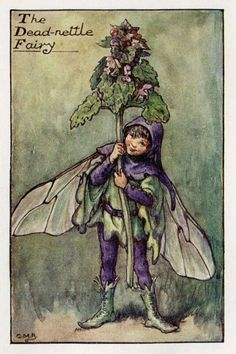 Deadnettle Flower Fairy Vintage Print c1927 by TheOldMapShop