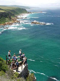 The Featherbed Nature Reserve - Knysna, Garden Route, South Africa