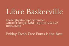 Libre Baskerville https://www.firedrive.com/file/ABEA49DB744C9C8C