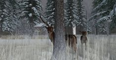 https://flic.kr/p/21Y9A2A | Fallow Deer-018 | The Fallow Deer at Binemust maps.secondlife.com/secondlife/Binemust/132/156/717   Thank you for such beauty, dear Bine Rodenberger!