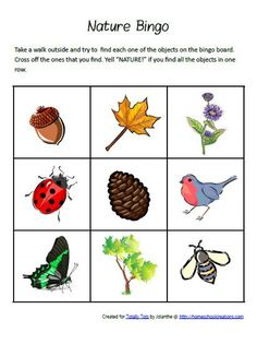 Spring Nature BINGO Game Preschool Printable
