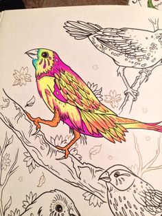 Megamunden Tattoo Coloring Book Colouring, Coloring Books, Tattoo Coloring Book, Rooster, Tattoos, Artwork, Animals, Vintage Coloring Books, Tatuajes