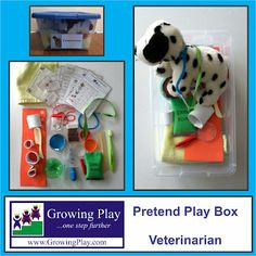 Pretend play box - veterinarian.  Include some homemade props like head cones, casts, dog treats and more. diy cast, cone, etc.