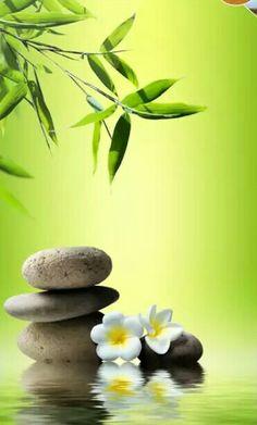 Grren zen effect. Zen Wallpaper, Wallpaper Backgrounds, Zen Pictures, Beautiful Pictures, Bollywood Wallpaper, Zen Rock, Quatrefoil Pattern, Just For Today, Zen Meditation