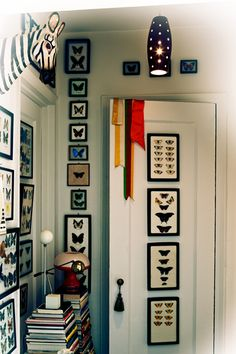 7 Decor Tricks That Aren't Expensive - but mostly just look at that sexy lepidoptera collection