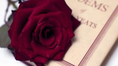 Top 50 Most Romantic Lines From Literature | Stylist Magazine