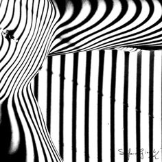 Fine Nudes Archivi - Stefano Giacchi