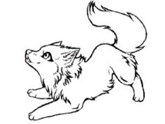Cute Arctic Wolf Coloring Pages from Animal Coloring Pages category. Printable coloring pages for kids that you can print and color. Have a look at our selection and print the coloring pages free of charge. Wolf Drawing Easy, Cute Wolf Drawings, Anime Wolf Drawing, Wolf Sketch Easy, Furry Wolf, Wolf Pup, Furry Art, Animal Sketches, Animal Drawings