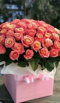 One of my favorite - My site Beautiful Flowers Wallpapers, Beautiful Rose Flowers, Pretty Flowers, Luxury Flowers, Exotic Flowers, Colorful Flowers, Rose Arrangements, Beautiful Flower Arrangements, Orange Rose Bouquet