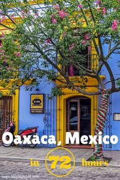 Oaxaca – now this is Mexico! Oaxaca showcases everything that is great about Mexico. Friendly locals, amazing food, a rich history and so much color. Read on to discover how to make the most of 3 days in Oaxaca, Mexico. Cozumel Mexico, Vallarta Mexico, Mexico Vacation, Puerto Vallarta, Mexico Travel, Mexico Trips, Oaxaca City, South America Travel, North America