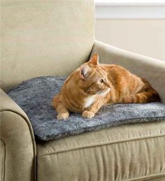 PurrPads, which help keep cat fur off your furniture and offer comfy spots for your kitty!