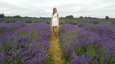 Want to escape the city while still on the tube line? Plan a relaxing day trip to London's Lavender field and frolic in this amazing purple paradise