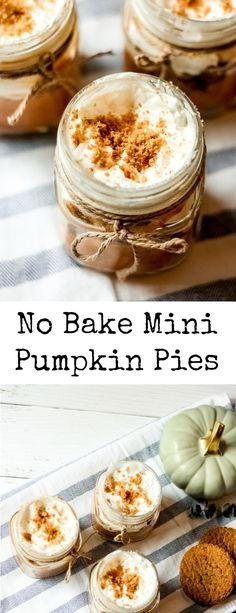 Layered Pumpkin Cheesecake, Mini Pumpkin Pies, Pumpkin Cheesecake Recipes, No Bake Pumpkin Pie, Mini Pumpkins, Baked Pumpkin, Pumpkin Dessert, Pumpkin Recipes, Pumpkin Spice