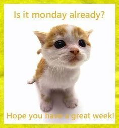 happy monday quotes and pictures   Monday009