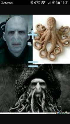 Funny pictures about Pirates of the Azkaban. Oh, and cool pics about Pirates of the Azkaban. Also, Pirates of the Azkaban photos. Davy Jones, Voldemort, Memes Br, Funny Memes, Hilarious, Memes Humor, Funny Quotes, Captain Jack Sparrow, Jack Sparrow Meme