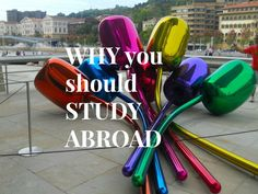 Are you wondering whether or not you should study abroad? Here are the life lessons I learnt while studying abroad.