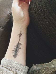 22 Photos of Mystical Pine Tree Tattoos